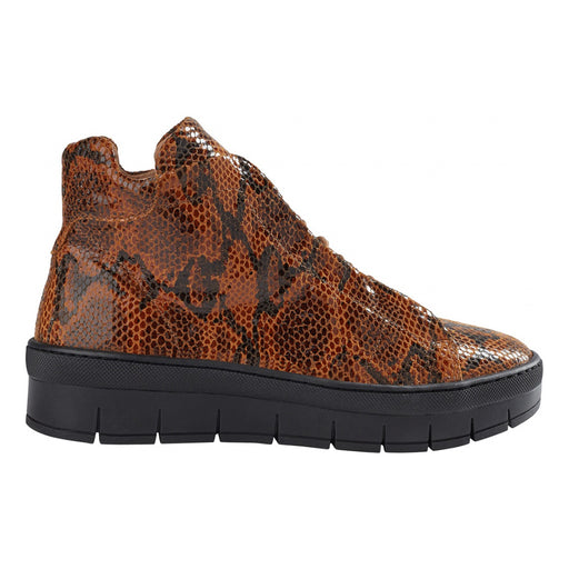 Pavement Maddie Lace Snake 18381-1-308 støvle brown-Pavement-Hoofers - We love shoes