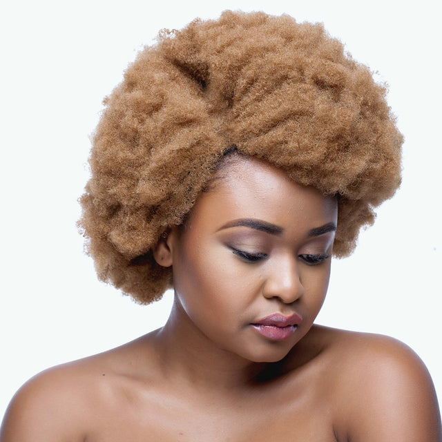 Colour 27 Synthetic Afro Wig 14 inch