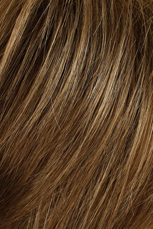 Golden Brown w Medium Blonde Highlights (16HL10)