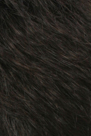 Darkest Brown w Dark Brown Blend (R2/4)