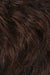 Chestnut Brown w Medium Auburn Frost (R36F)