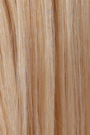 Pale Golden Blonde / Light Ash Blonde Highlights (R613/24H)