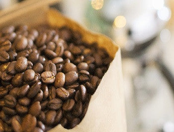 What is The Best Way to Store Coffee?