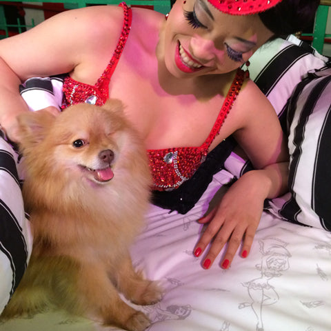 Showgirl in bed with one-eyed pomeranian
