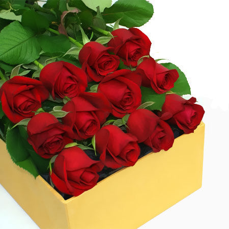 12-red-roses-box_1024x1024