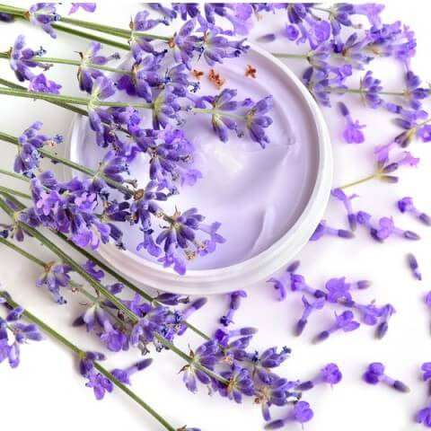 Ingredients - LAVANDULA ANGUSTIFOLIA