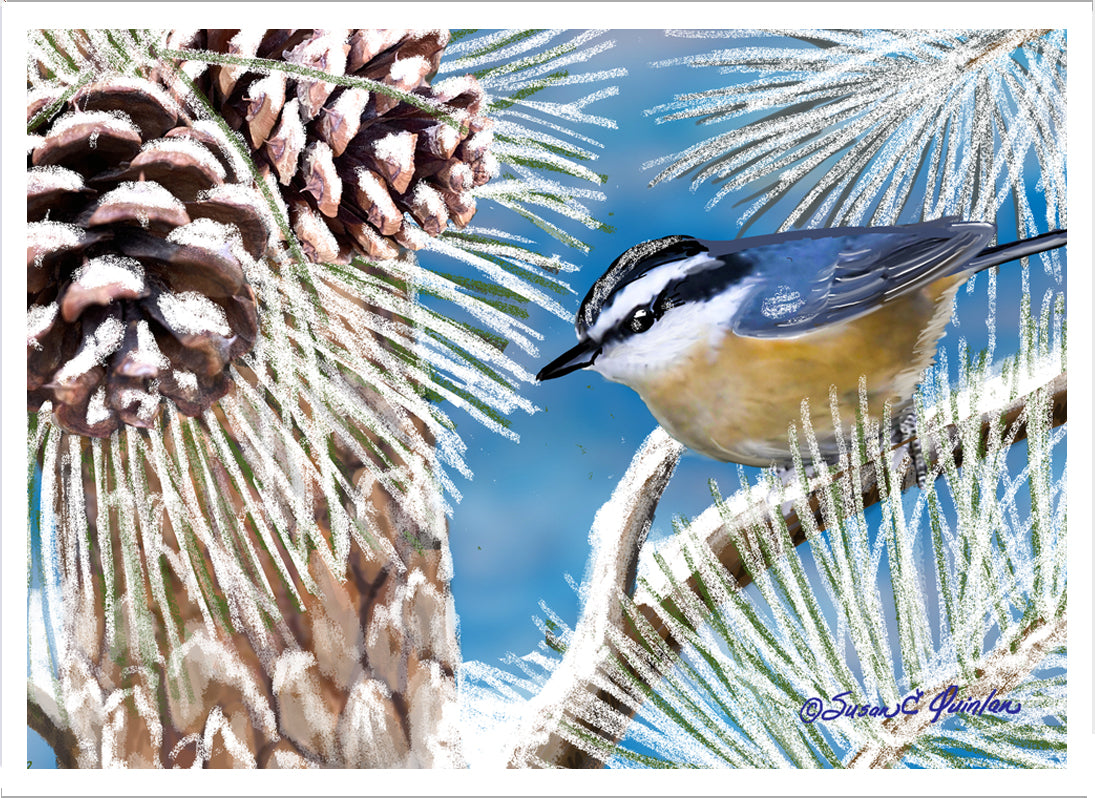 Winter Nuthatch Greeting Card