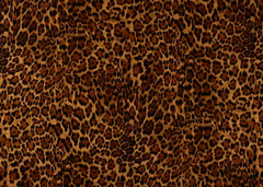 Leopard Print - 100% Cotton Masks