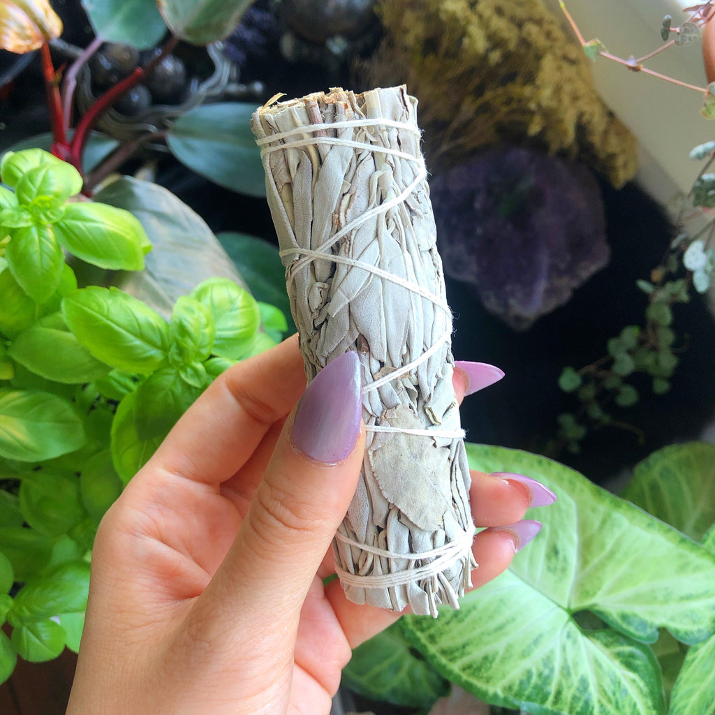 White Sage Cleansing Stick