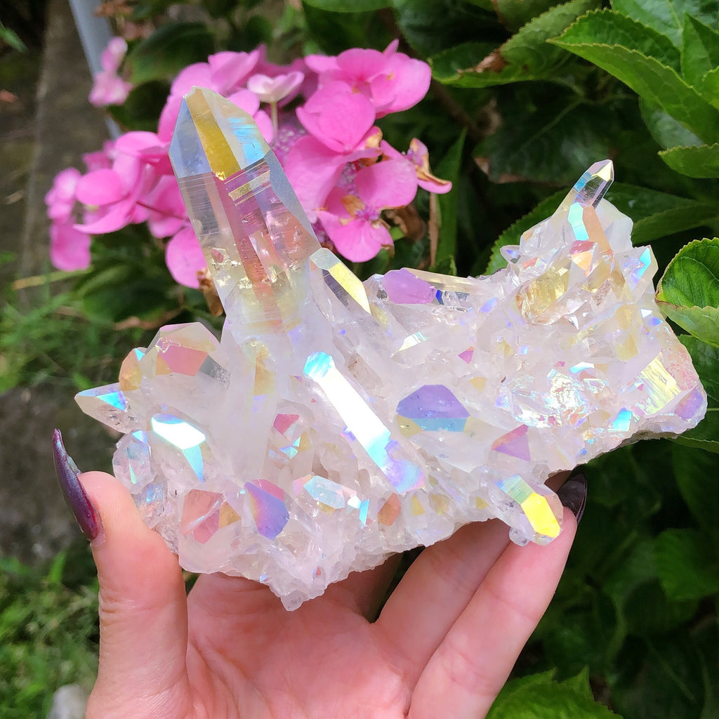 Angel Aura Himalayan Quartz with Lemurian XXL Display Cluster #2