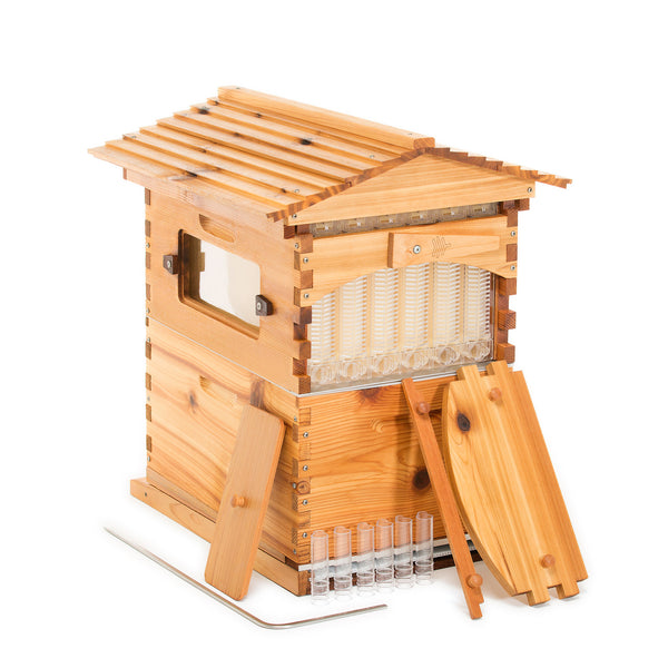 Flow Hive Classic Cedar 6 Frame - Sealed