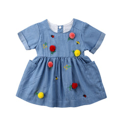 Baby Girl Denim Embroidery Dress