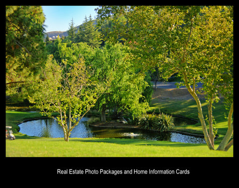 Real Estate Photo Packages
