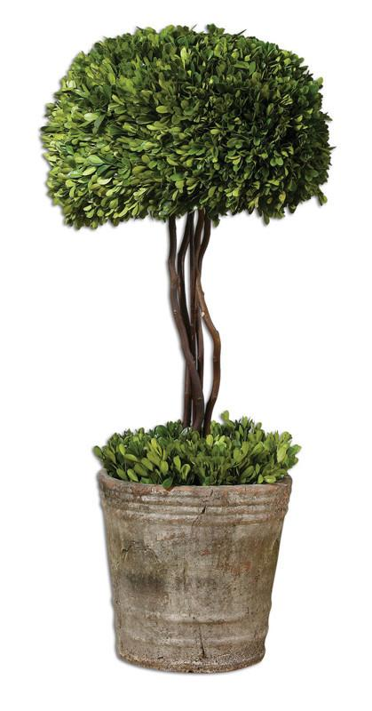 UTTERMOST 60095 Preserved Boxwood Tree Topiary Botanicals