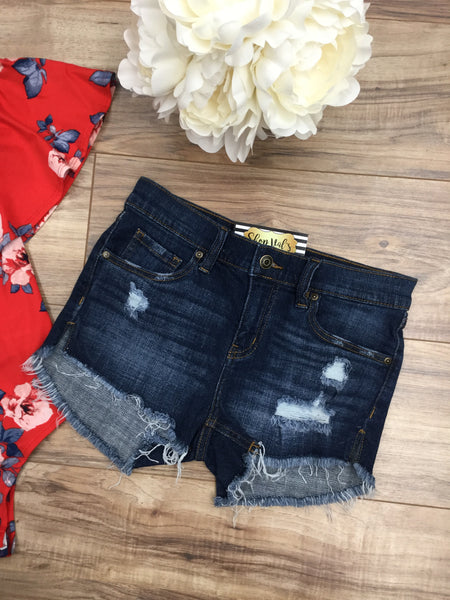 Holly Destroyed Denim Shorts