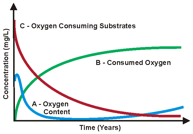 Oxygen Contribution to Wine during Bottle Aging