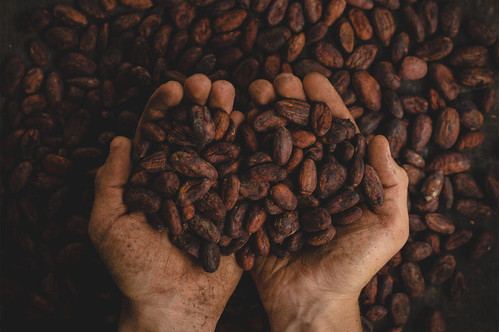 Everything you need to know about cacao powder: what is cacao, what are the health benefits & how can you eat it?