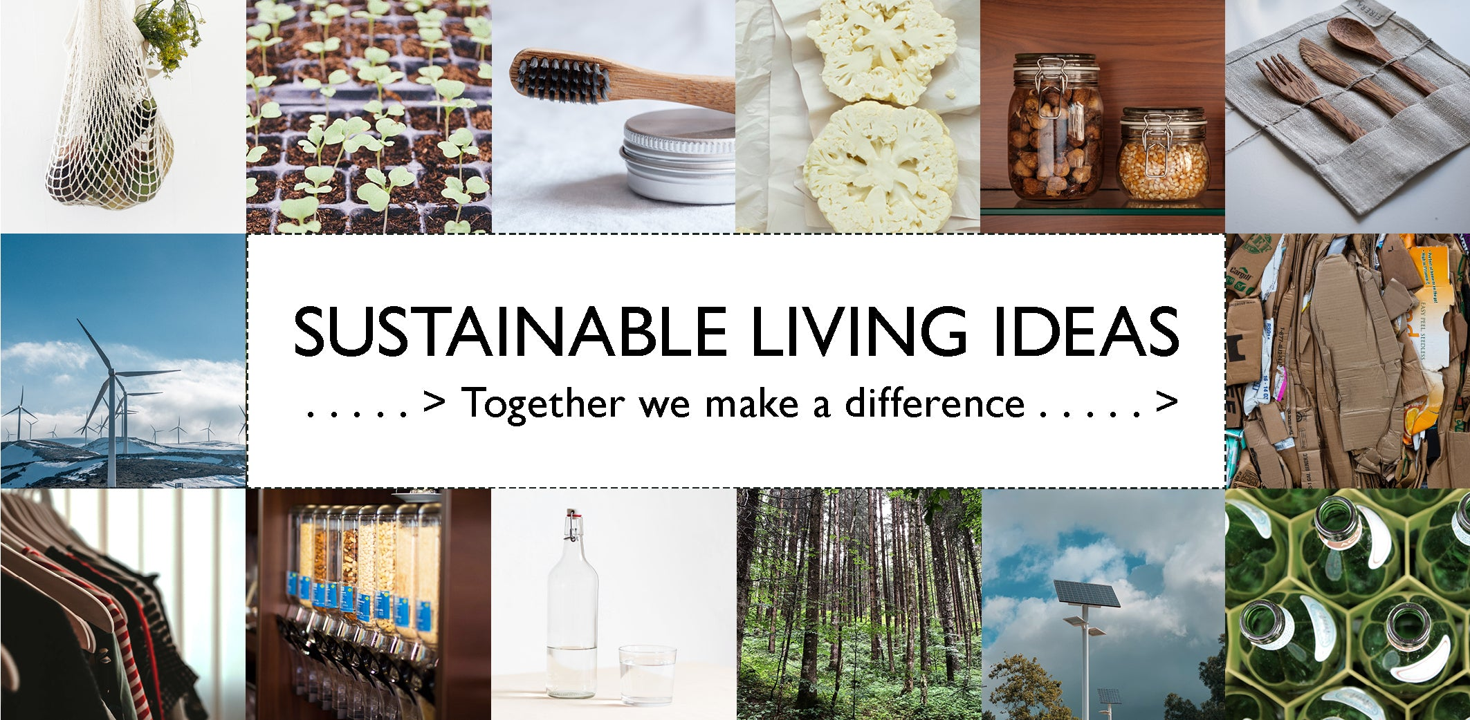 Healthy Sustainable Living - create ecological change