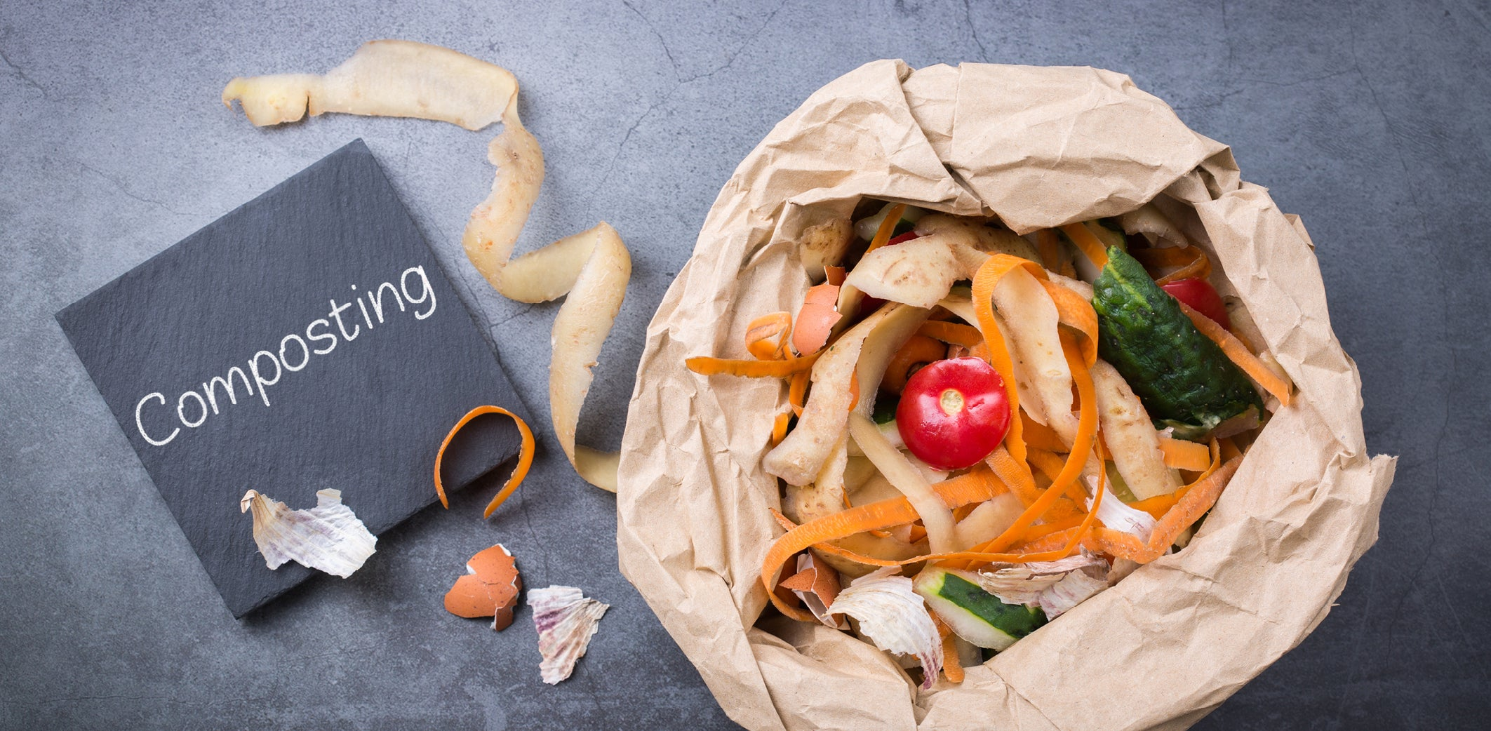 trash bags which to use - Compostable, Biodegradable or Recycled plastic