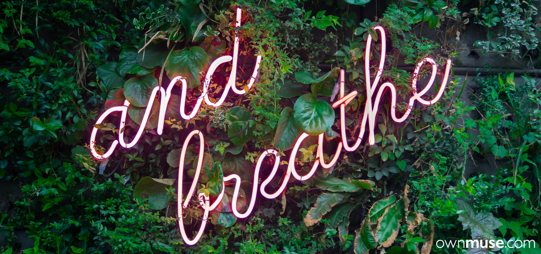 Pink neon words and breathe on green garden wall