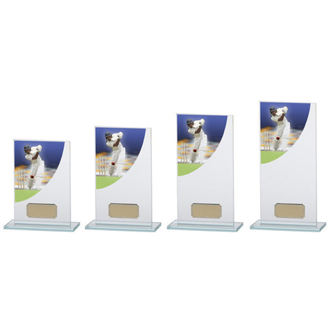 Personalised Engraved Cricket Colour Curve Glass Trophy 5 Sizes Available Free Engraving