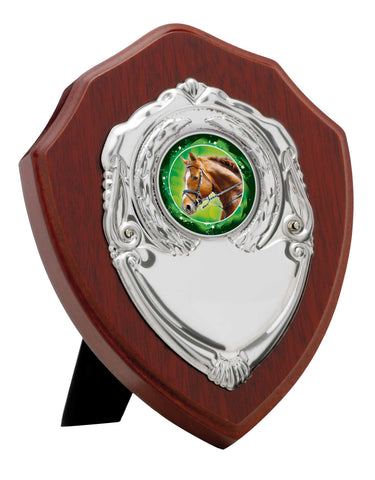 Personalised Engraved Any Sport Multi Sport Shield Trophy 4 Sizes Available Free Engraving