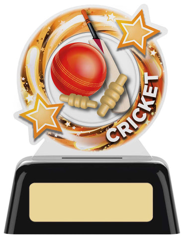Personalised Engraved Acrylic Cricket Trophy 2 Sizes Available Free Engraving