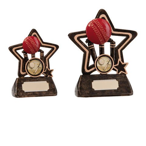 Personalised Engraved Little Star Cricket Trophy 2 Sizes Available Free Engraving