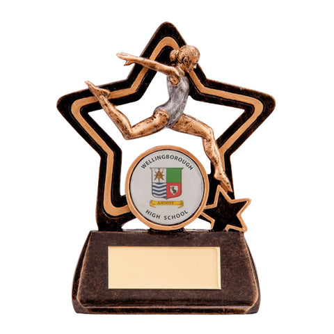 Personalised Engraved Little Star Female Gymnastics Plaque Trophy Free Engraving