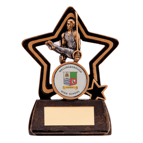 Personalised Engraved Little Star Male Gymnastics Plaque Trophy Free Engraving