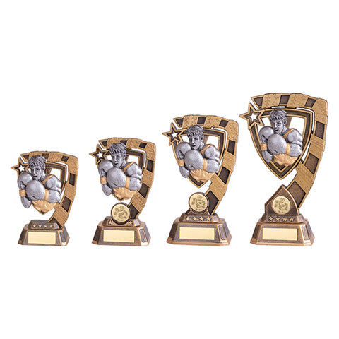 Personalised Engraved Euphoria Boxing Trophy 4 Sizes Available Free Engraving