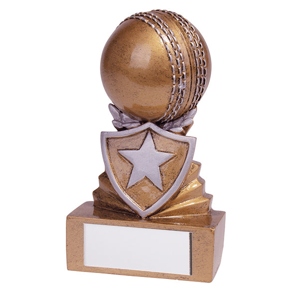 Personalised Engraved Shield Cricket Trophy Free Engraving