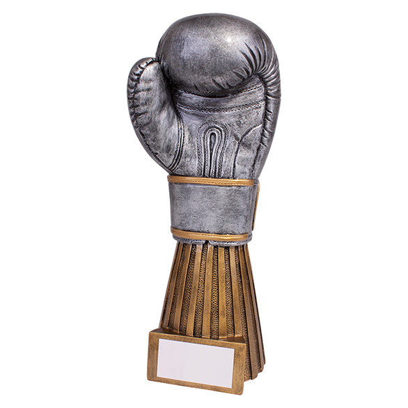 Personalised Engraved Challenger Boxing Trophy Free Engraving