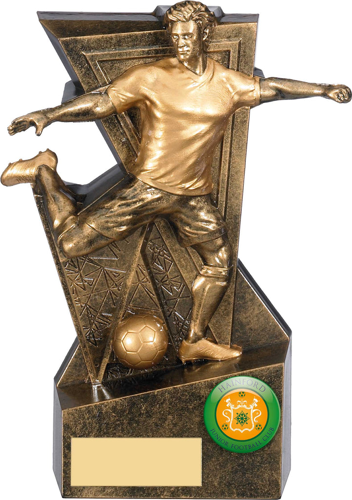Personalised Engraved Resin Football Trophy 4 Sizes Available Free Engraving