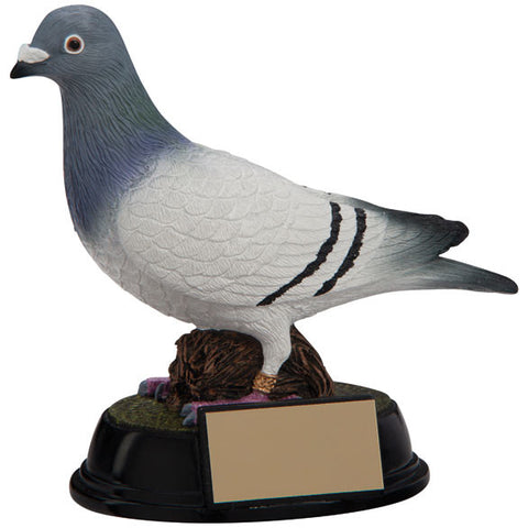 Pigeon Resin Trophy
