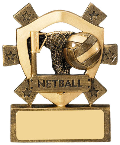Personalised Engraved Resin Netball Trophy Free Engraving