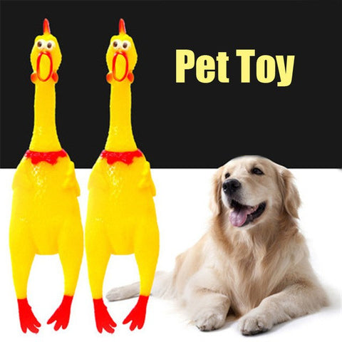 Household - Screaming Yellow Rubber Chicken Dog Toy