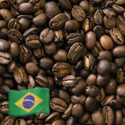 Brazil Santuario Roasted