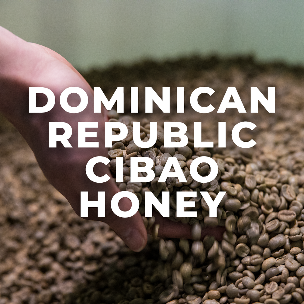 Dominican Republic Cibao Honey Processed