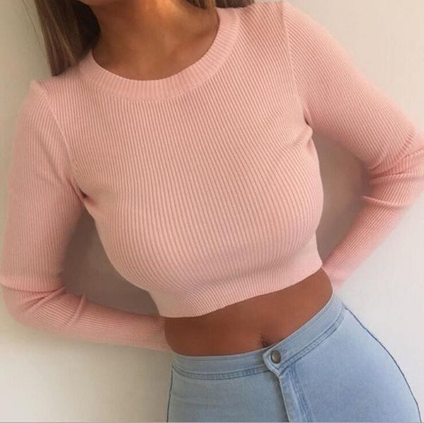 Long Sleeves Round Neck Short Shirt Top Tee