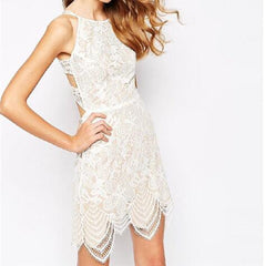 Irregular Eyelash Lace Backless Dress