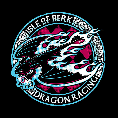 Isle Of Berk Dragon Racing How To Train Your Dragon