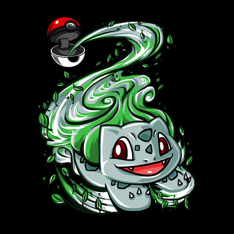 Bulbasaur Pokeball Pokemon