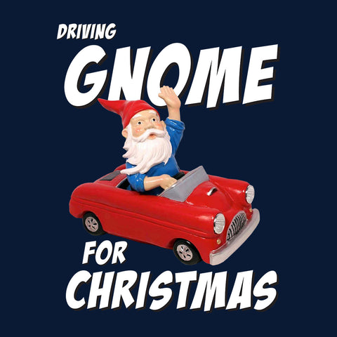 Driving Gnome for Christmas