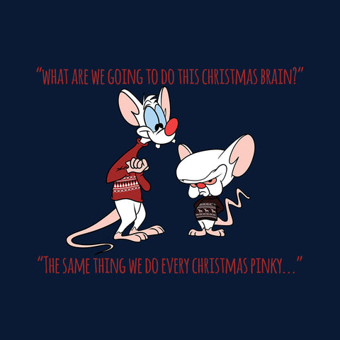 Pinky And The Brain Christmas Plans