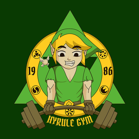 Legend Of Zelda Link Hyrule Gym