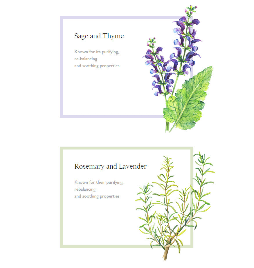 Sage and Thyme and Rosemary and Lavender