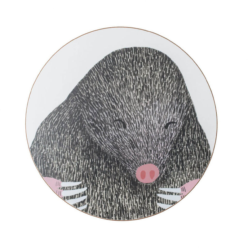 Set of Four Nocturnal Animal Coasters