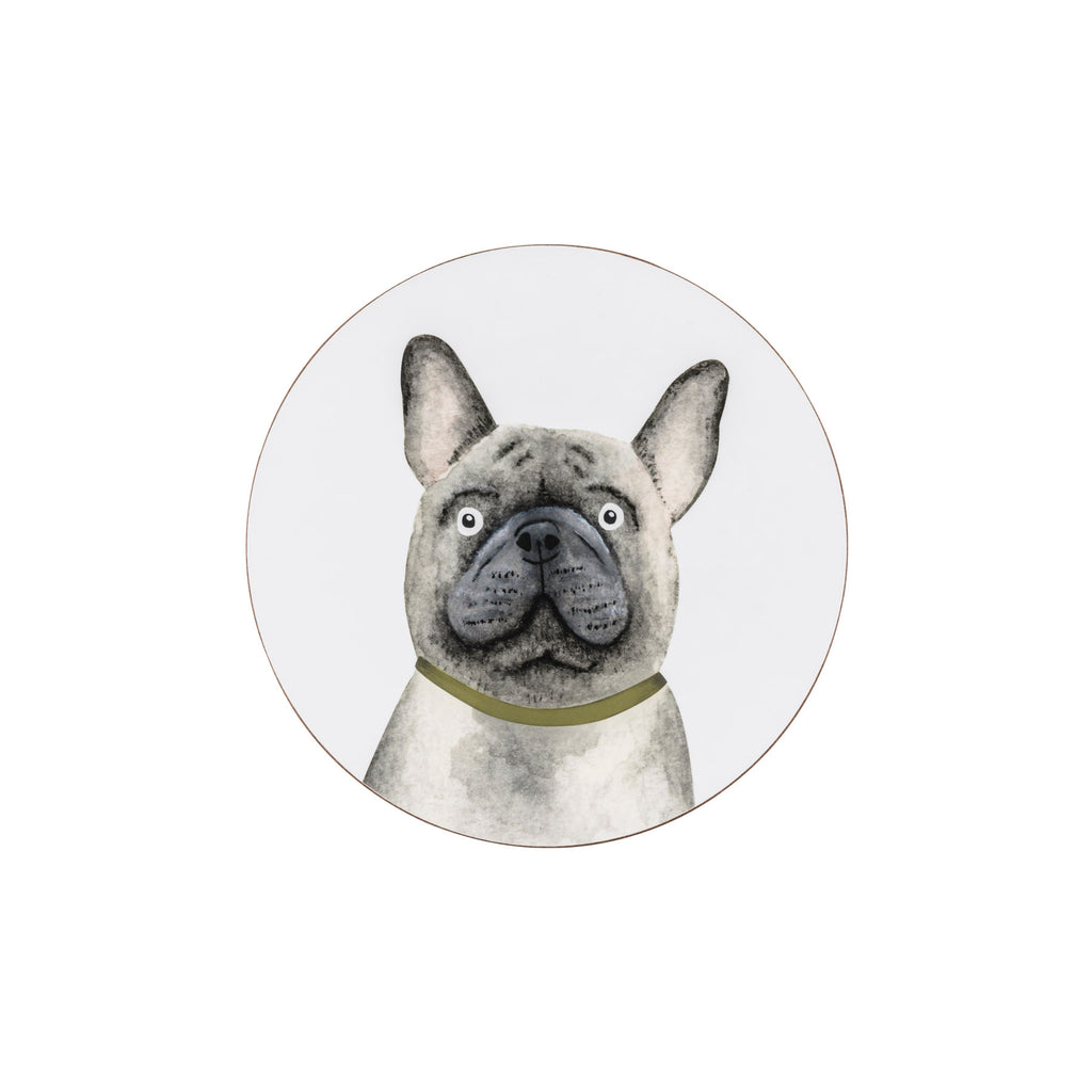 Buzz The Dog Coaster