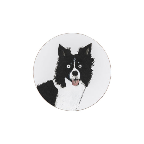 Colin The Dog Coaster